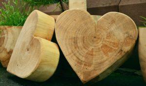 לבבות מעץ